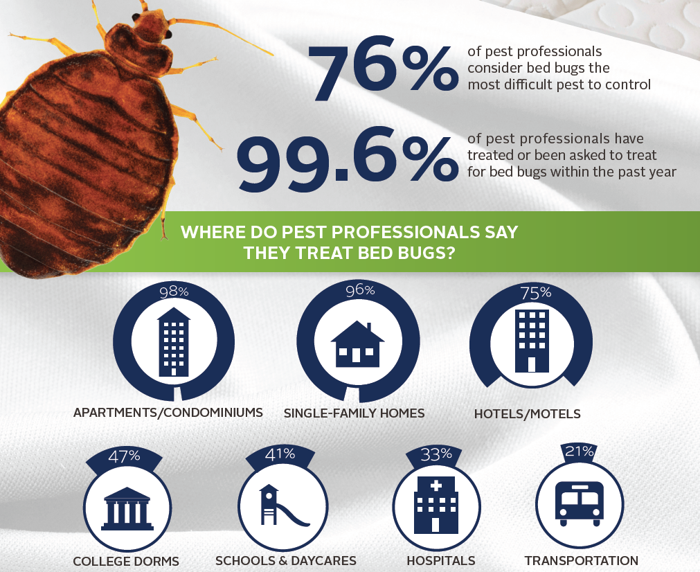 Bed Bug Treatment Vancouver