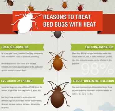 Bed Bugs Heat Treatment in Calgary