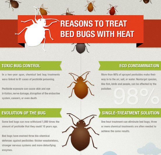 High Quality Bed Bugs Heat Treatment In Calgary